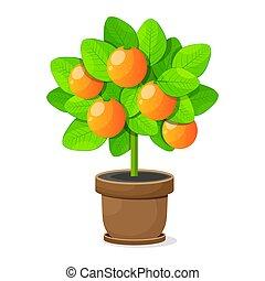 fa, elszigetelt, háttér., vektor, narancs, fehér