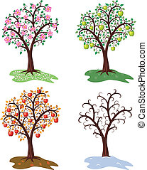 fa, fűszerezni, állhatatos, vektor, négy, alma