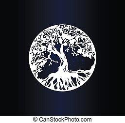 fa, fehér, árnykép, élet, háttér, gradiens