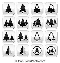 fa, gombok, állhatatos, vektor, sóvárog