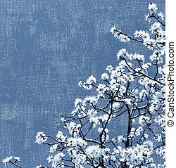 fa, háttér, virágzó