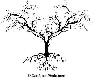 fa, kívül, árnykép, levél növényen