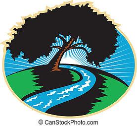 fa, kanyargás, amerikai hikkorimogyoró, retro, folyó, napkelte