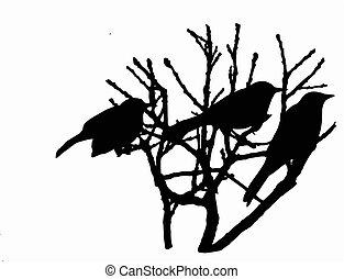 fa, madarak, ülés