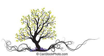 fa, menstruáció, vektor, gyökér