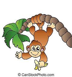 fa, pálma, majom, függő