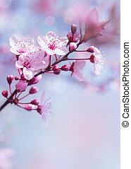 fa, tavasz, háttér, virágzó