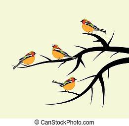 fa, vektor, elágazik, madarak