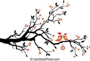 fa, vektor, madarak, csókolózás