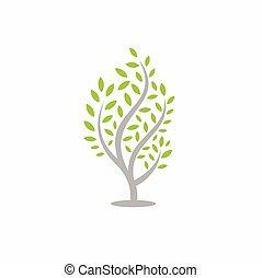 fa, zöld, elszigetelt, háttér, fehér
