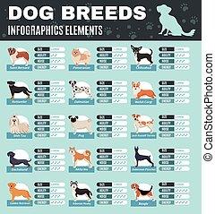 fajta, kutyák, infographics