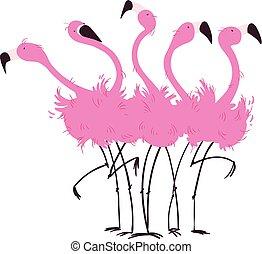 falka, flamingó, ábra, vektor