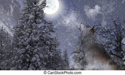 farkas, hold, télies, éneklés, 3, forest., illustration.