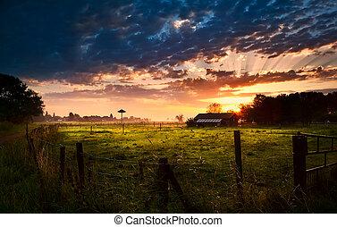 farmház, napkelte, holland