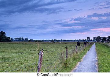 farmland, napkelte, holland