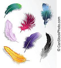 feather%u2019s, állhatatos, többszínű