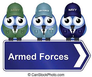 fegyveres, aláír, erőltet