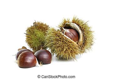 fehér, chesnuts, háttér