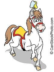 fehér, cirkusz, ló
