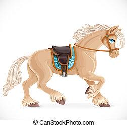 fehér, elszigetelt, csinos, harnessed, háttér, ló