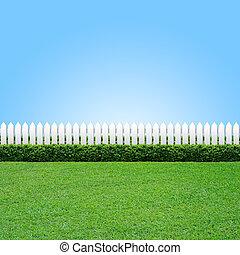 fehér, fű, zöld, kerítés