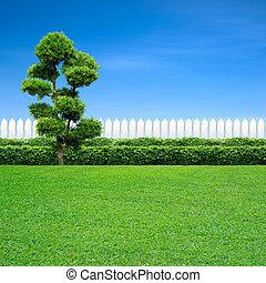 fehér, fa, kerítés
