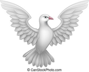 fehér, fogalom, galamb