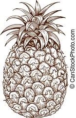 fehér, metszés, hát, ananász