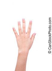 fehér, nő, háttér, kéz