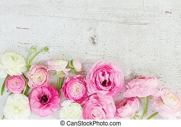 fehér, rózsaszínű, boglárka, menstruáció