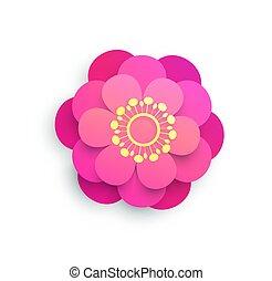 fehér, virágzó virág, rügy, elszigetelt, origami, rózsaszínű