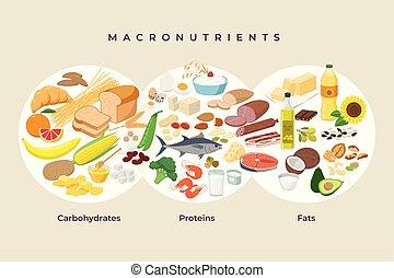 fehérje, fogyókúra, -, elements., makro, macronutrients., ábra, concept., vektor, lakás, élelmiszerek, étkezési, tervezés, egészséges, összehasonlítás, ikonok, élelmiszer, carbohydrates, isolated., hizlal, legfontosabb, infographic, alakzat
