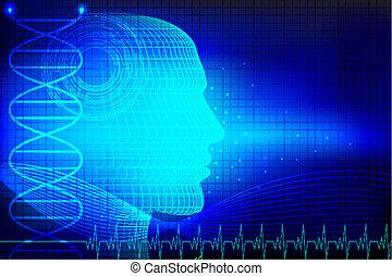 fej, emberi, orvosi, háttér
