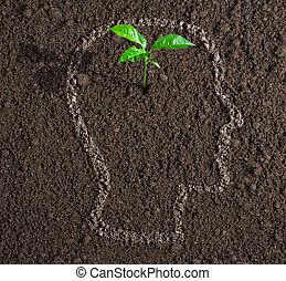 fej, fogalom, talaj, belső, gondolat, fiatal, növekedés, emberi, körvonal