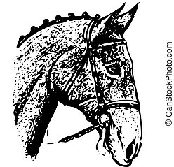 fej, rajz, háttér, fekete, fehér, ornate-silhouette, ló