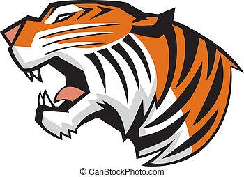 fej, tiger, vektor, ordítozó, szegély kilátás
