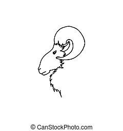 fej, vektor, árnykép, döngöl, skicc, ábra, kéz, profile., fekete, rajz, goat