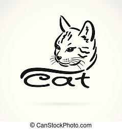 fej, vektor, illustration., pet., editable, macska, háttér., réteg, könnyen, freehand, animal., fehér, festmény