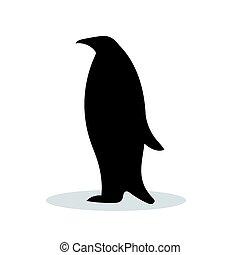 fekete, árnykép, madár, állat, pingvin