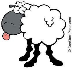 fekete bárány, beijedt