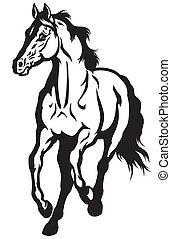 fekete, futás, ló, fehér