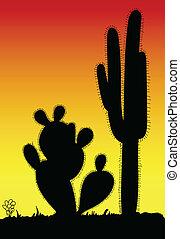 fekete, kaktusz, árnykép, tüskés