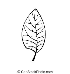 fekete, levél növényen, elszigetelt