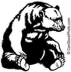 fekete medve, ülés, fehér