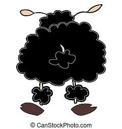 fekete, sheep.