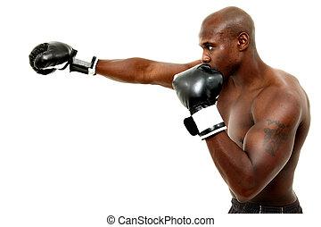 felett, bokszoló, fekete, bájos, white hím