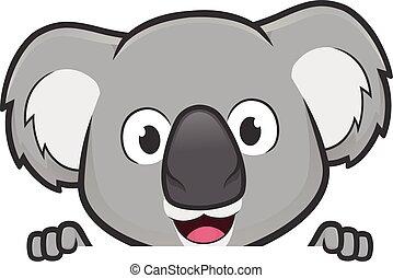 felett, látszó, tiszta, birtok, cégtábla kosztol, koala