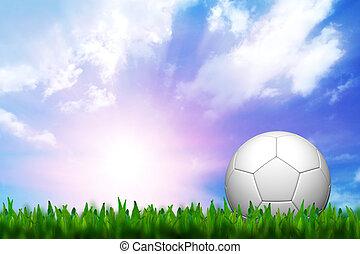 felett, labdarúgás, ég, zöld fű, félhomály