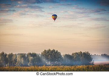 felett, repülés, levegő, korán, csípős, erdő, reggel, balloon
