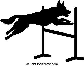 felett, ugrás, kutya, gát, agilitás